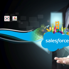 Developer Transition from Java to Salesforce