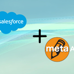 Salesforce Metadata API